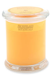 Archipelego Botanicals Excursion Candle, $18 Nordstrom