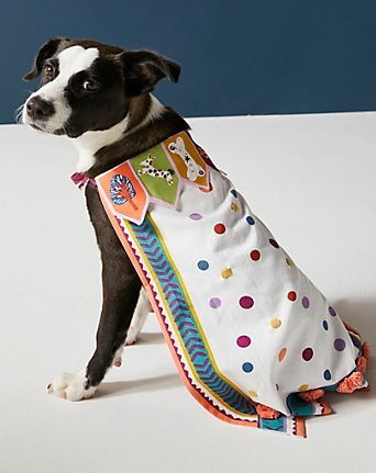 Dress-Up-Pup-Cape.jpeg